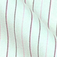 Pinpoint Oxford Cotton in Soft Multicolor Stripes on White
